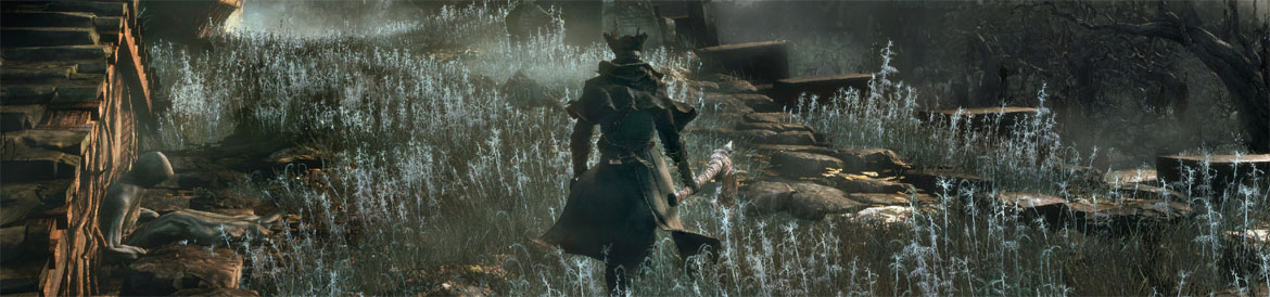 Check out the Qt3 Bloodborne Game Diary
