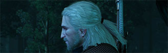 The_Witcher_3_GD_sidebar