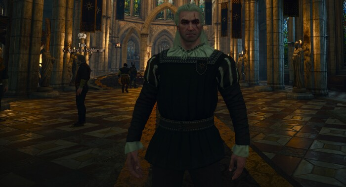 Witcher_3_GD_velvet